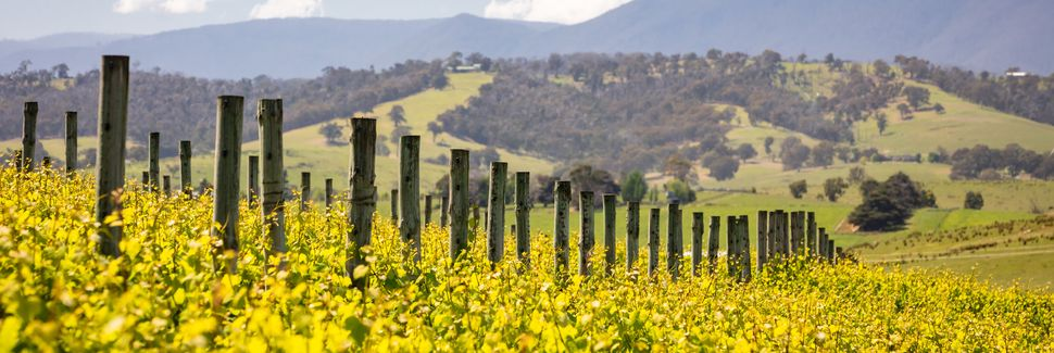 Yarra Valley and Dandenong Ranges, VIC, Australia