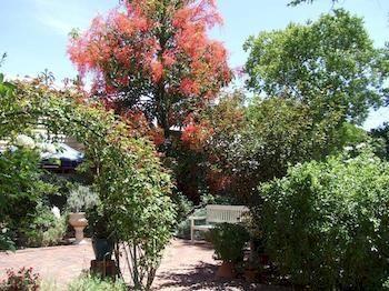East Cannington, WA, Australia
