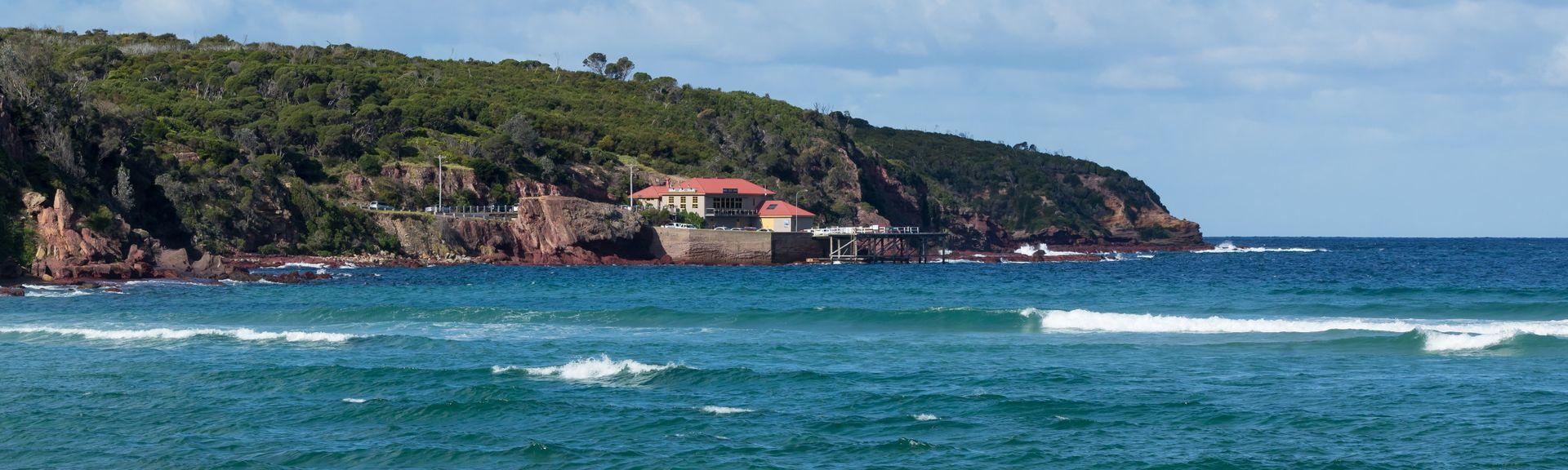 Sapphire Coast Marine Discovery Centre, Eden, New South Wales, Australia