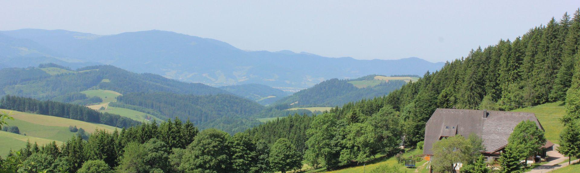 Partie méridionale de la Forêt-Noire, Bade-Wurtemberg, Allemagne