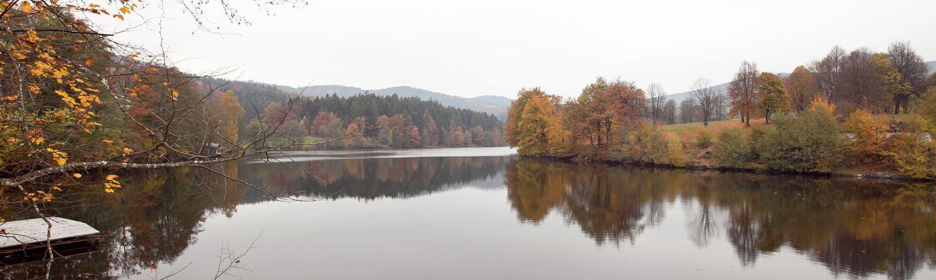 Neukirchen vorm Wald, Germany