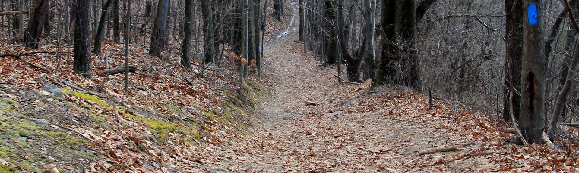 Pleasant Gap, Pennsylvania, USA