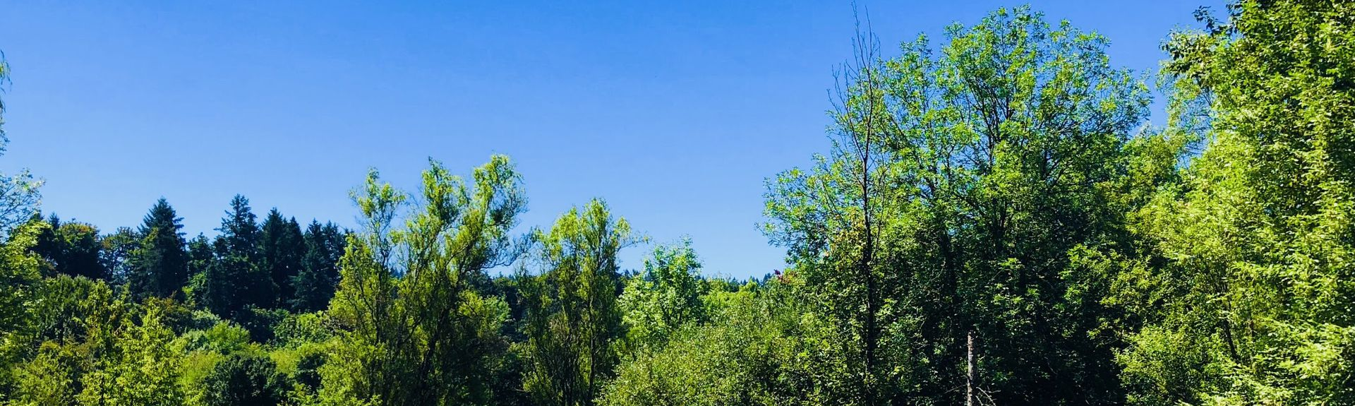 Champoeg State Park, Newberg, OR, USA