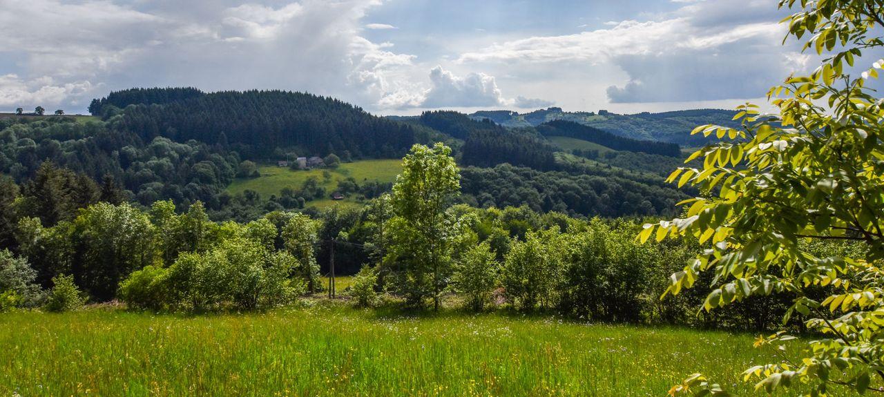 Cusset, Auvergne-Rhône-Alpes, France