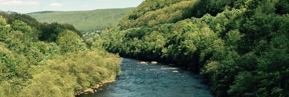 Comté de Schuylkill, Pennsylvanie, États-Unis d'Amérique