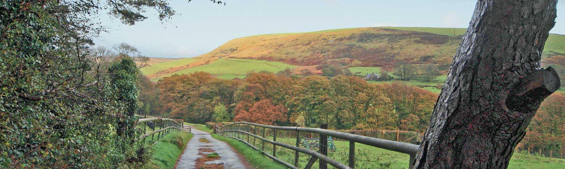 Ferndale, Wales, United Kingdom