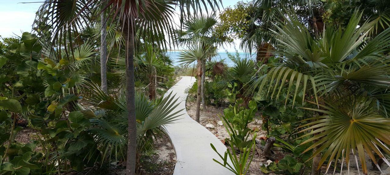 Clarence Town, Bahamas