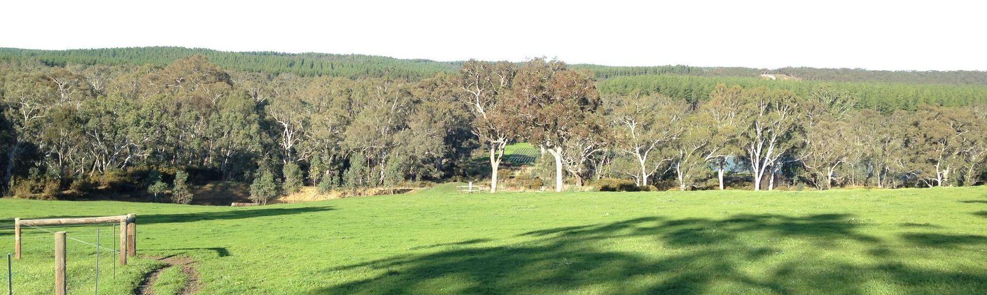 Meadows, South Australia, Australia