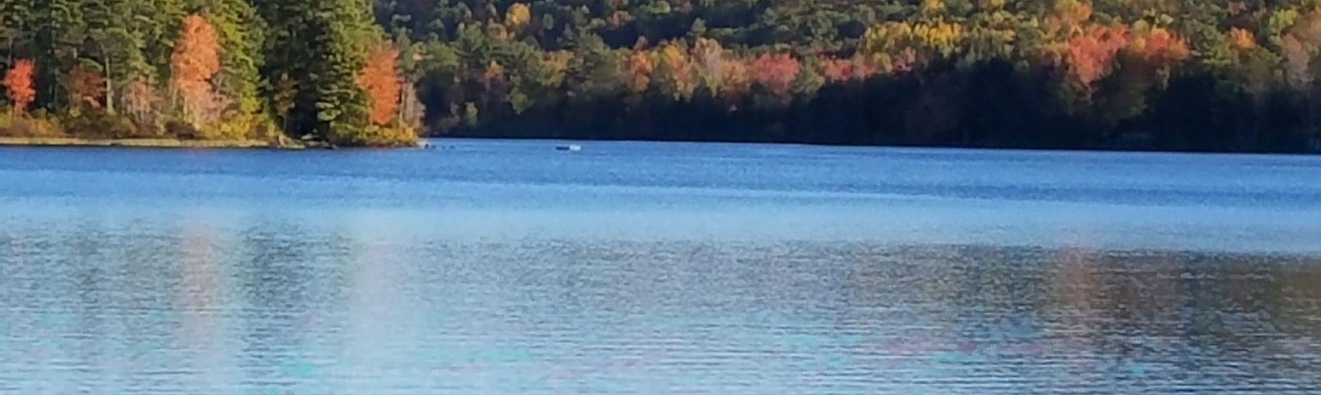 Limington, Maine, Stany Zjednoczone