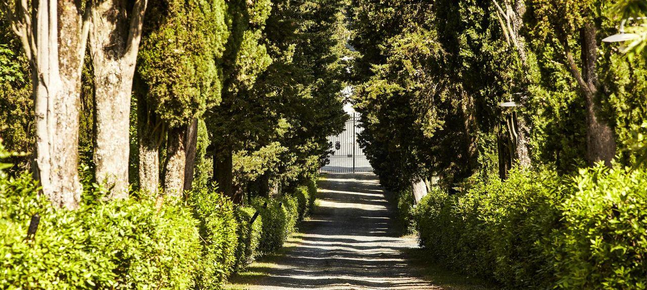 Chiantin seutu, Toscana, Italia