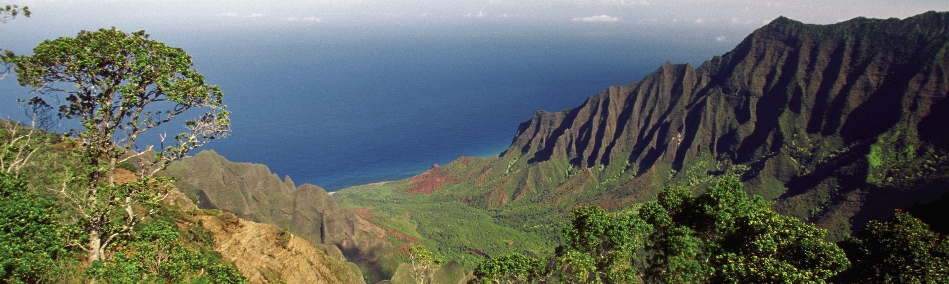 Waimea, Hawaii, USA