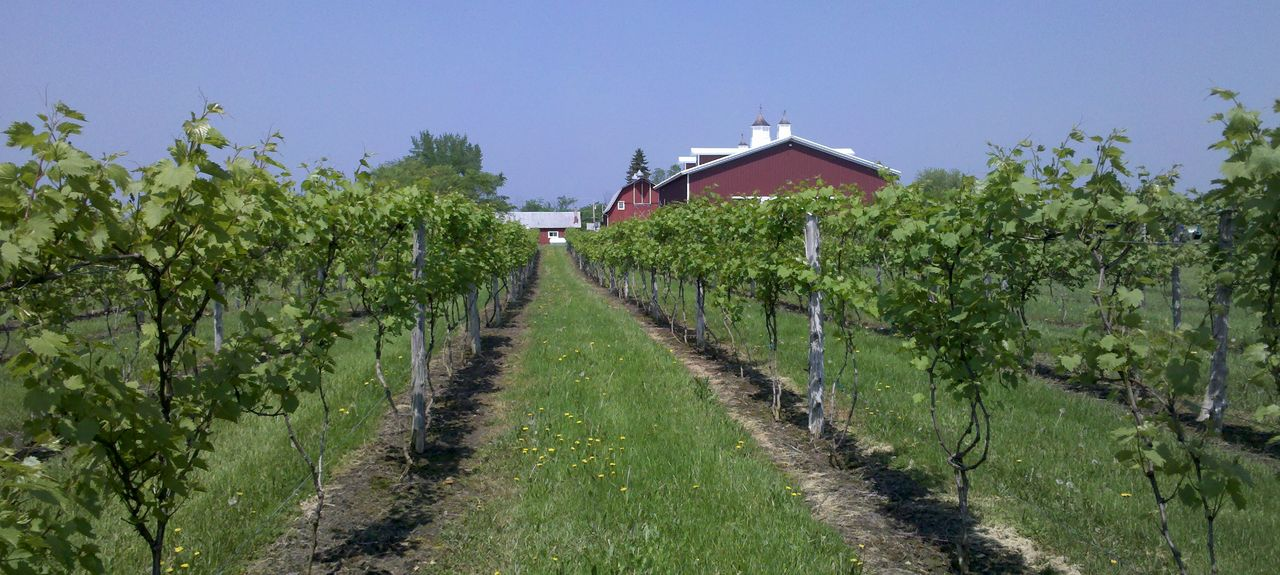 Thousand Islands Winery, Alexandria Bay, NY, USA