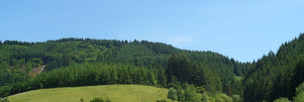 Les Ardillats, Auvergne-Rhône-Alpes, France