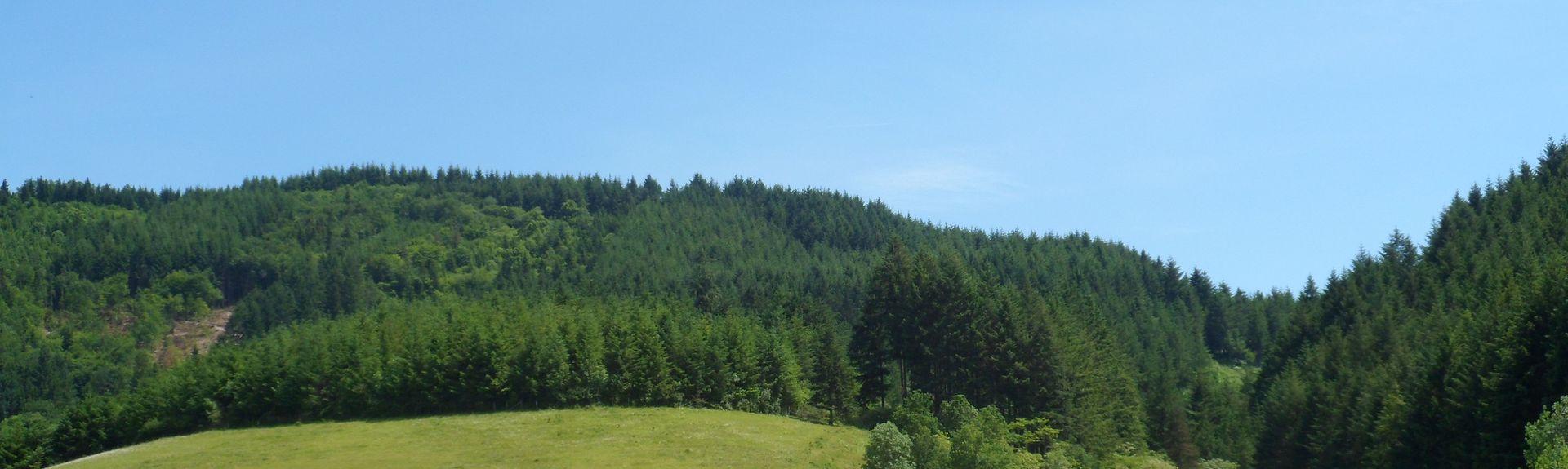 Propières, Auvergne-Rhône-Alpes, France