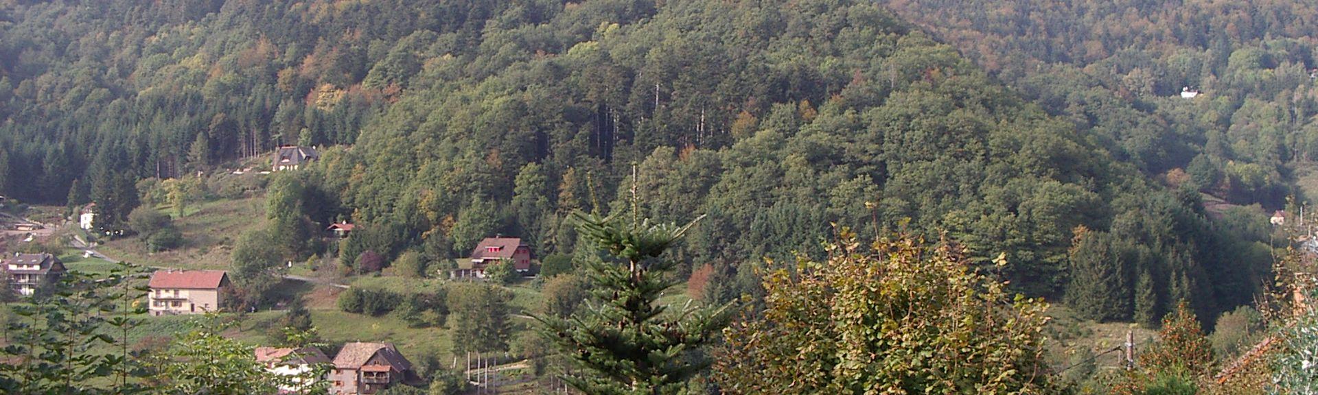 Station Valdieu-Lutran, Valdieu-Lutran, Haut-Rhin (departement), Frankrijk