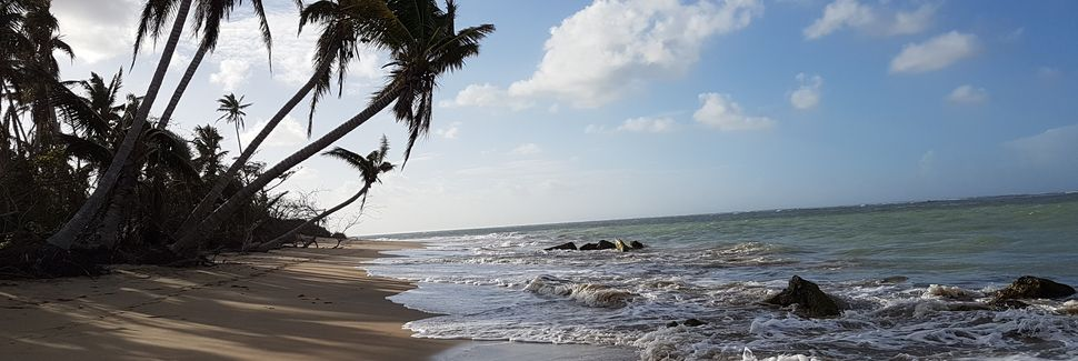 Cangrejo Arriba, Carolina, Porto Rico