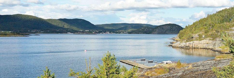 Comté de Sør-Trøndelag, Norvège