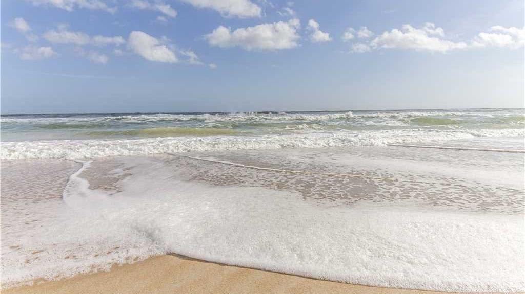 Pelican Inlet, Crescent Beach, FL, USA