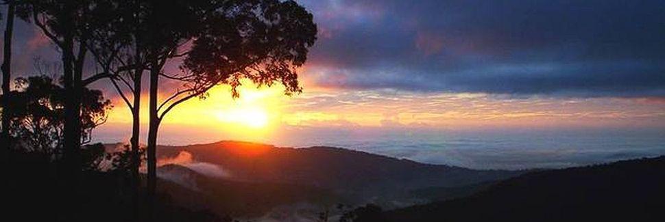 Mount Birnam, Hinterland, Queensland, Australia