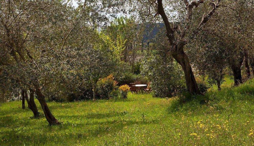 Bagnoregio, Lazio, Italia