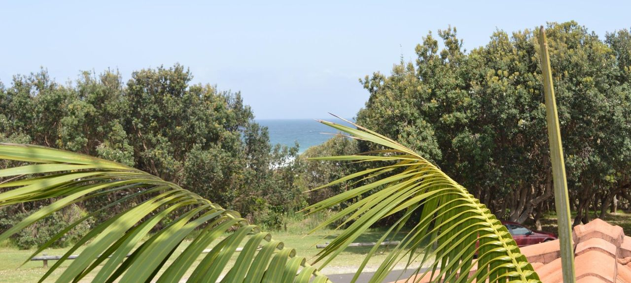 Pippi Beach, Yamba, New South Wales, Australia