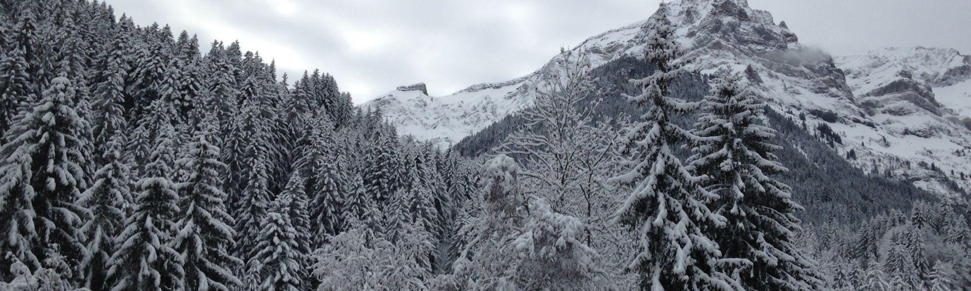 Bex, Kantonen Vaud, Schweiz