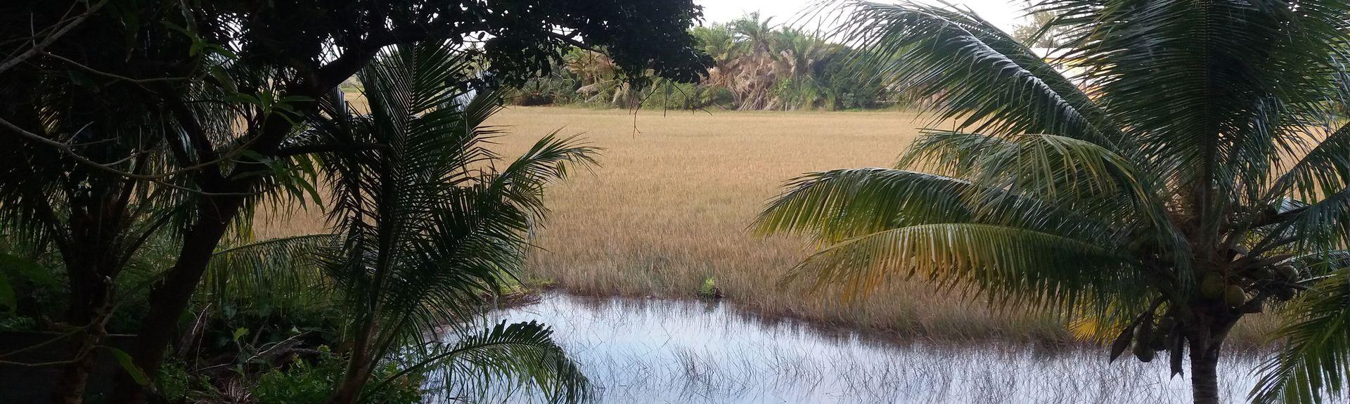 São Sebastião do Passé, Catu, State of Bahia, Brazil