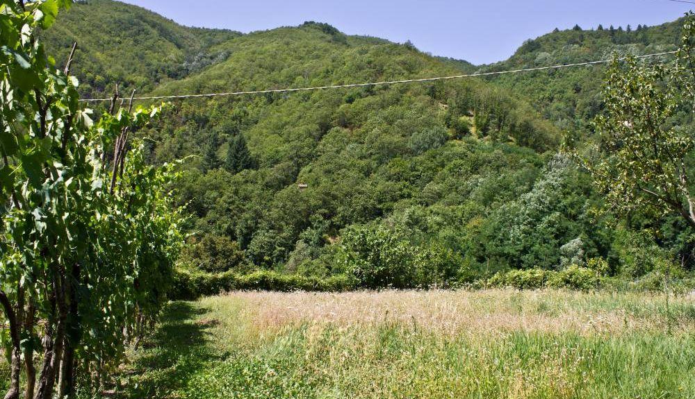 Palagano, Emilia-Romagna, Italien