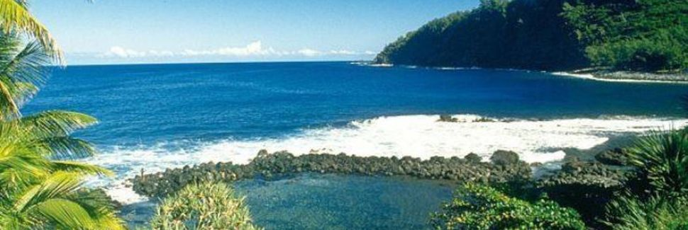 Bras-Panon, St Benoit, L'île de la Réunion