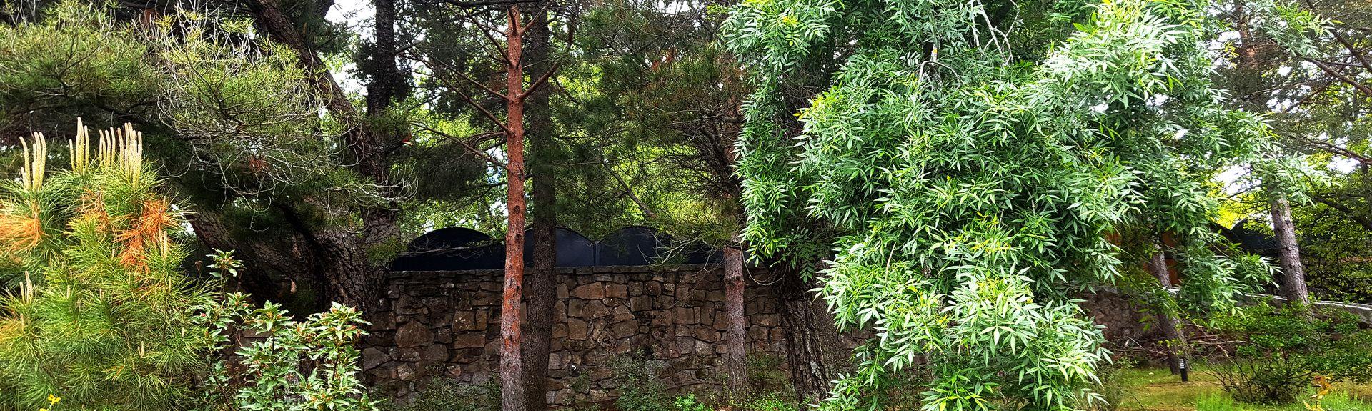 La Ponderosa de la Sierra, Madrid, Spain