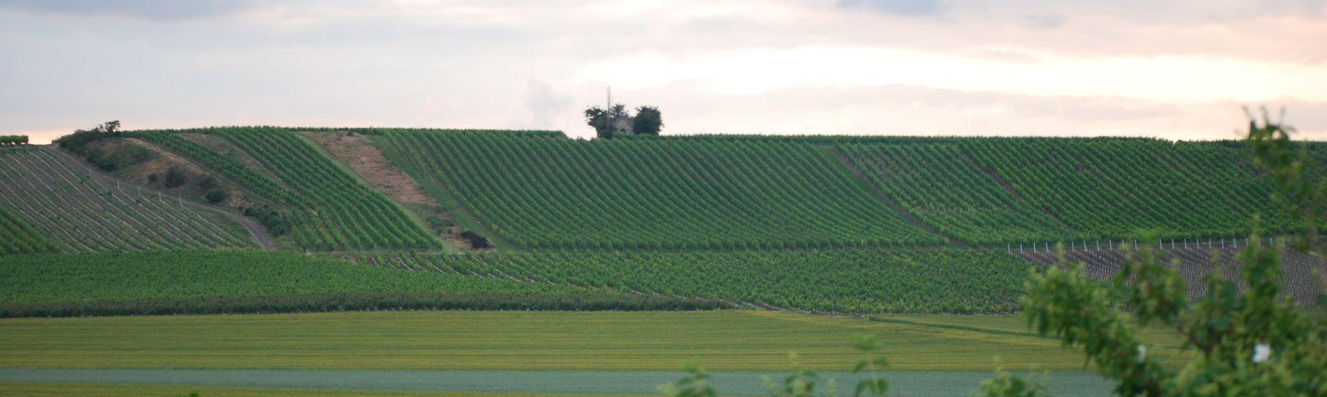 Gau-Odernheim, Rheinland-Pfalz, Tyskland