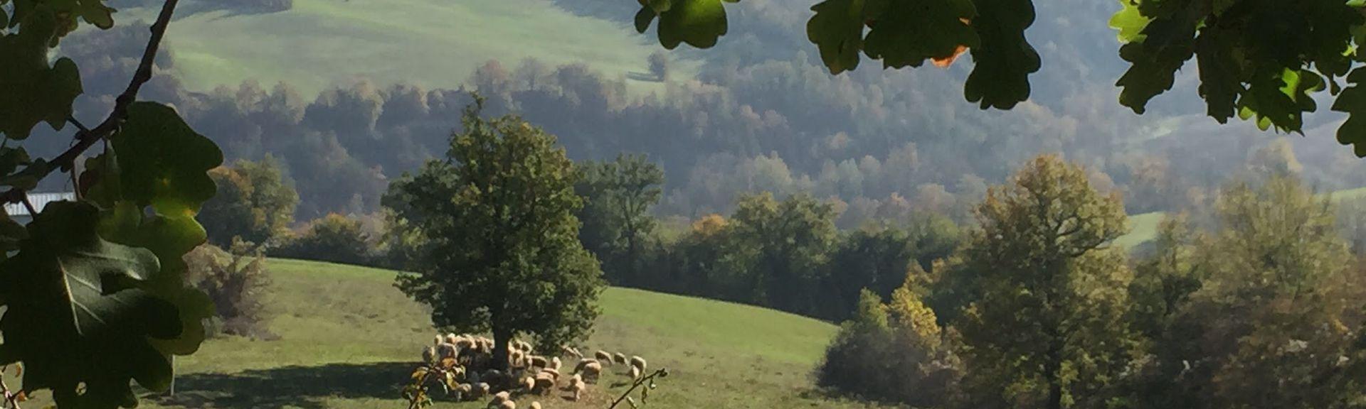 Penna San Giovanni, Marche, Italien
