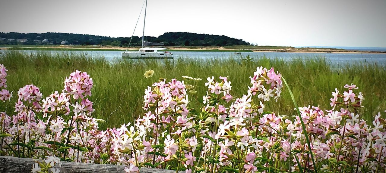 Mayo Beach, Wellfleet, Massachusetts, Vereinigte Staaten