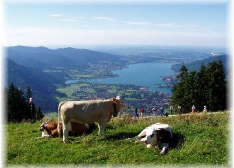Trinis, Rottach-Egern, Bavière, Allemagne
