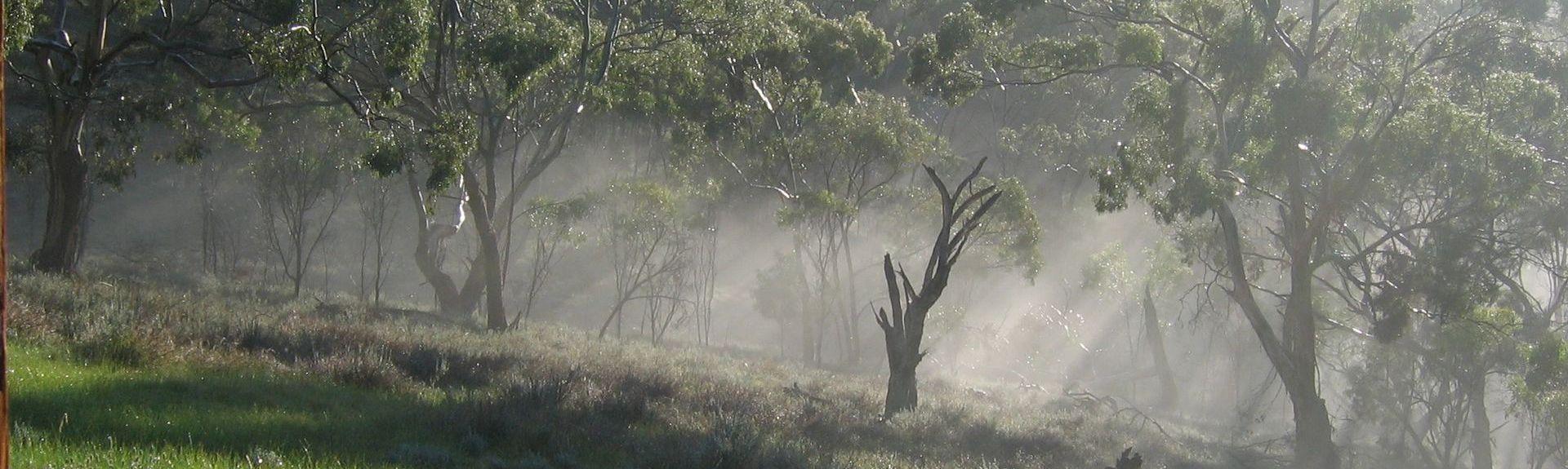 Auburn SA, Australia