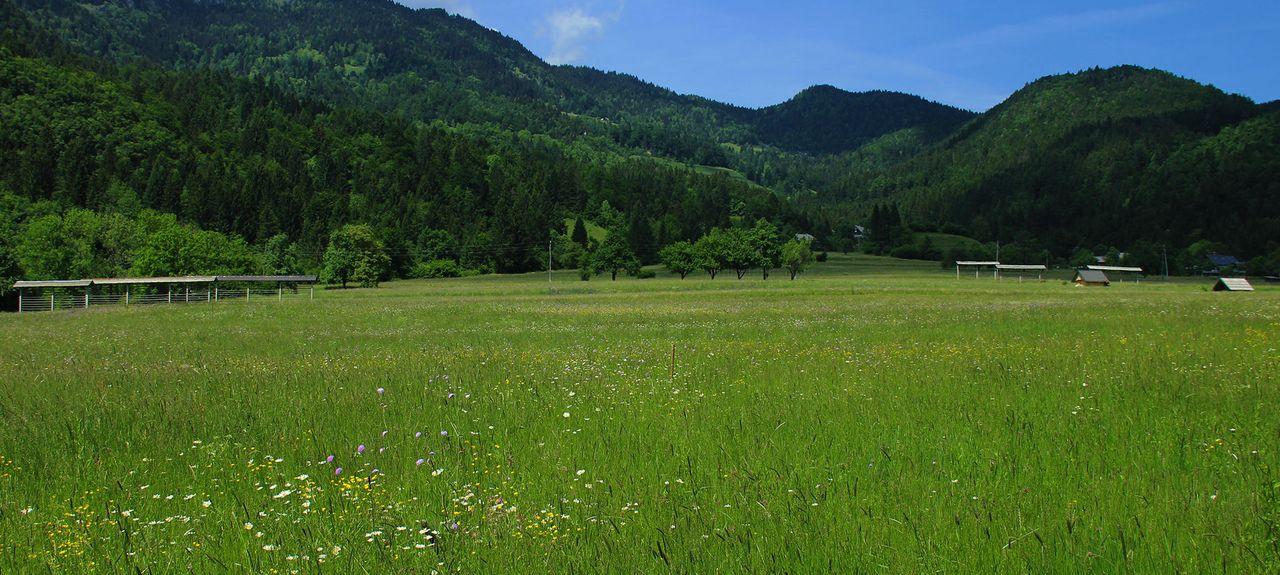 Bled, Radovljica, Slovénie