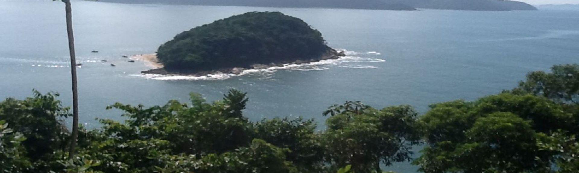 Île de Tamandua, Région Sud-Est, Brésil