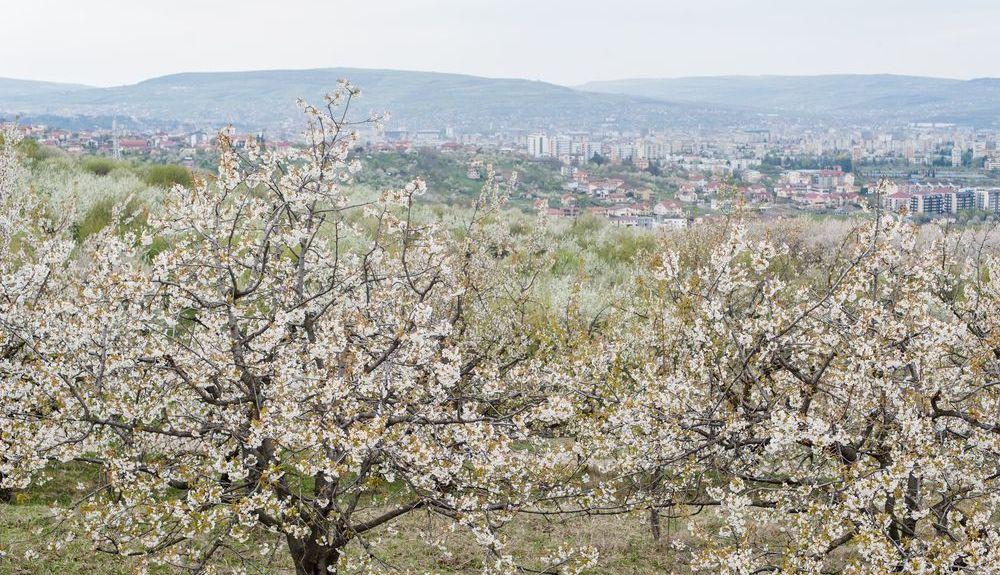 Klausenburg, Kreis Cluj, Rumänien