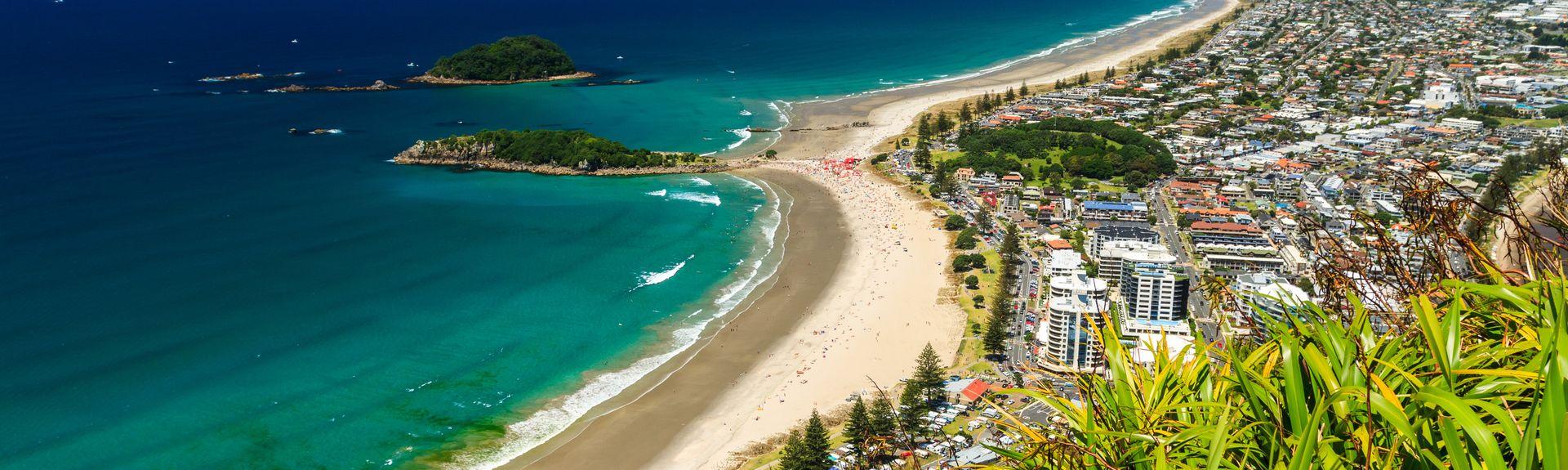 Tauranga, Bay Of Plenty, North Island, New Zealand
