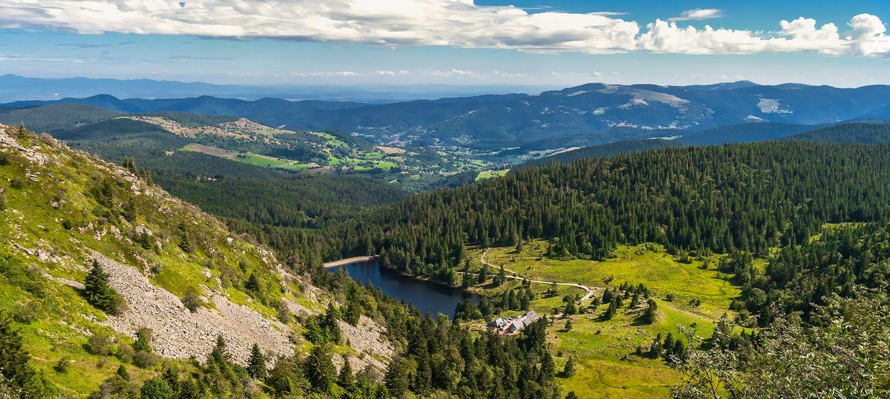 Vosges, Région Grand Est, France