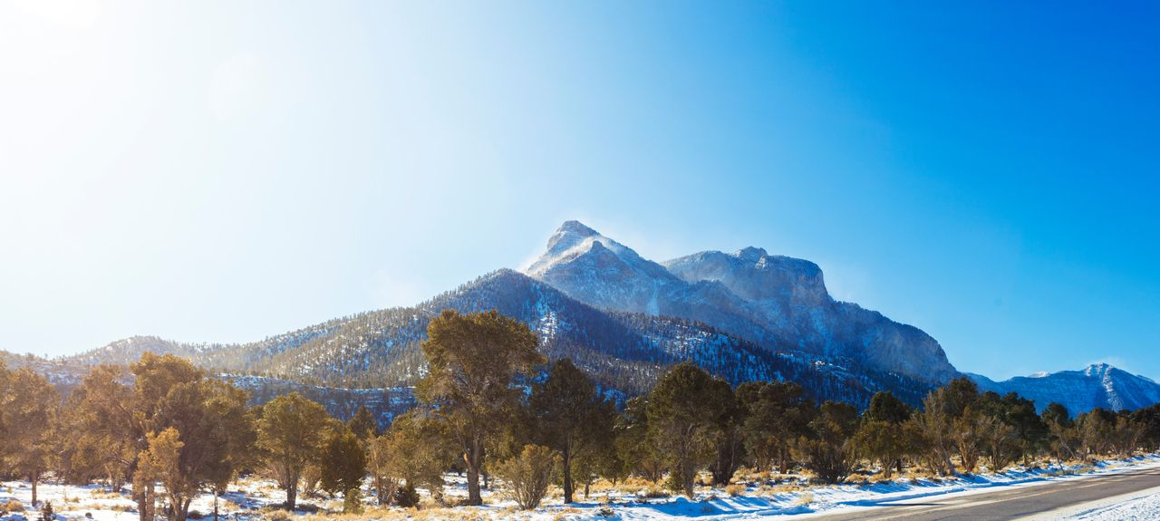 Mount Charleston, NV, USA