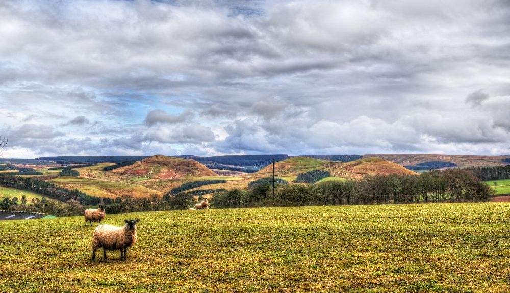 Scottish Borders, UK