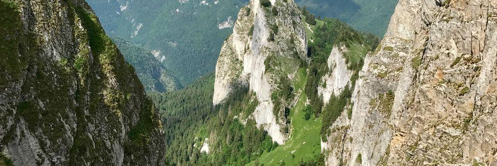 Saint-Cergues, Auvergne-Rhône-Alpes, France