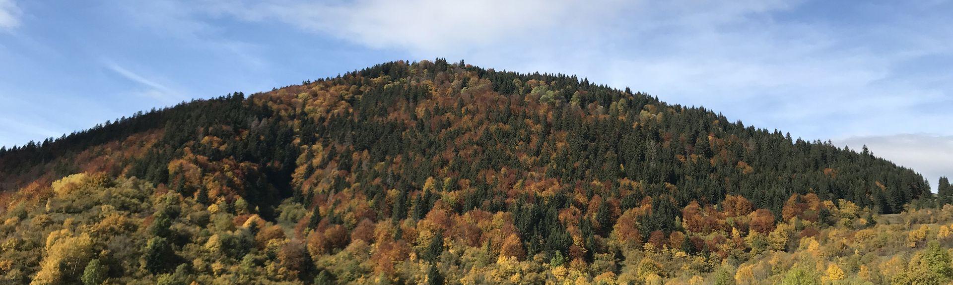 Kraj żyliński, Słowacja