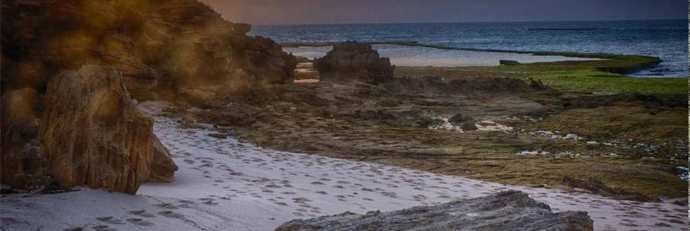 Bellarine Peninsula, VIC, Australia