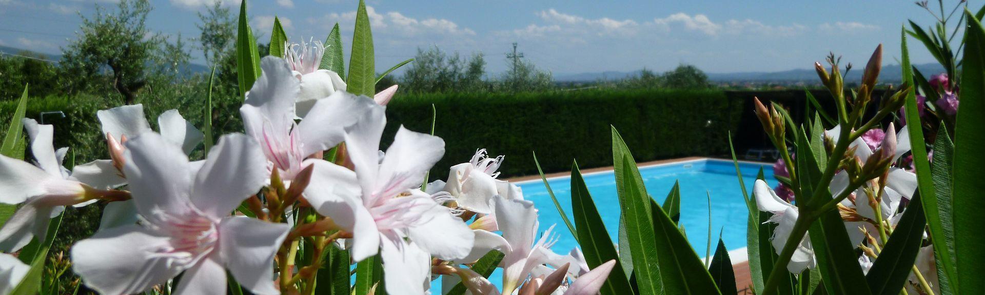 Santomato, Pistoia, Toscana, Italien