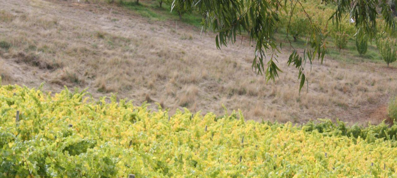 Gumeracha, SA, Australia