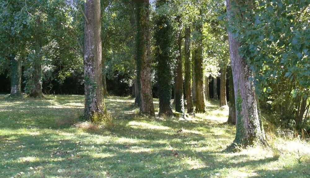 Orsennes, France