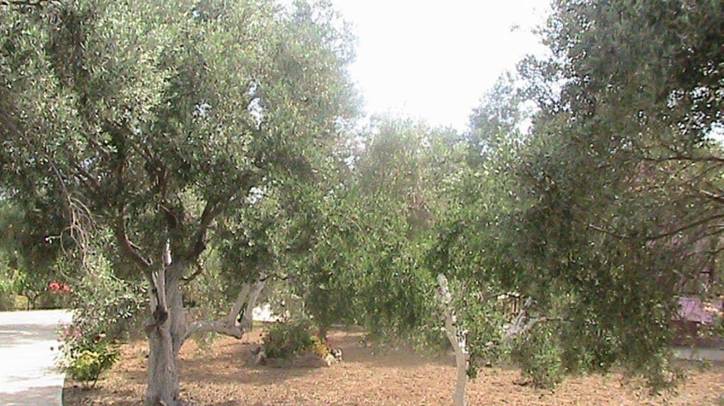 Yeropótamos, Creta, Grecia