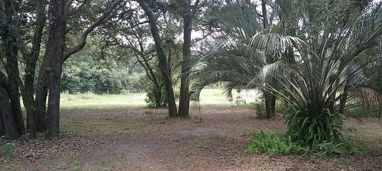 Nobleton, FL, USA